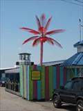 Image for River Grill Electric Palm Tree - Tonawanda, NY