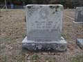 Image for William Eddie Medaris - New Chatfield Cemetery - Chatfield, TX