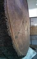 Image for The Big One - Lakewood, WA, US