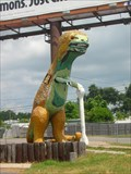 Image for Trex Obstacle - St Petersburg, FL