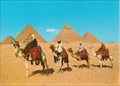 Image for Camelriders in front of the Pyramids - Giza