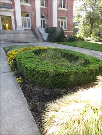 'O' Topiary, Looking South, UO, Eugene, Oregon