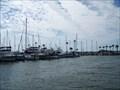Image for Dunedin Marina - Dunedin, FL