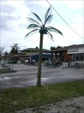 Image for Iron Fortress Electric Palm Tree - Hawkstone, Ontario, Canada