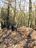 Image for TB 1509-36 Chlum