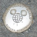 Image for Disney MGM--One Man's Dream