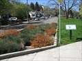 Image for Chapman's Green Street Stormwater Demonstration Garden, Portland, OR