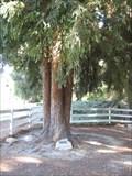 Image for Robert Lindburg - Rolling Hills Estates, CA