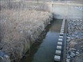 Image for Coppell minature Dam