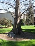 Image for James Devoss - SJSU - San Jose, CA
