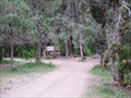 Image for Free Camping in Lake Fork Canyon