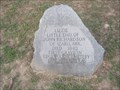 Image for Lizzie Richardson - FIRST Grave in Edgewood Cemetery, Lancaster, TX