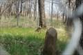 Image for Oregon Trail Verminllion River Cemetery