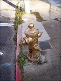 Image for San Francisco's Golden Fire Hydrant