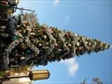 Image for California Adventure Christmas - Anaheim, CA