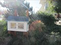 Image for The Little Library - Redwood City, CA