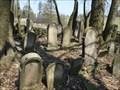 Image for židovský hrbitov / the Jewish cemetery, Vetrný Jeníkov, Czech republic