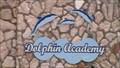 Image for Dolphin Academy Curacao/Curacao Sea Aquarium