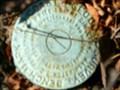 Image for US Coast & Geodetic Survey - PASS NO. 3