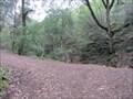 Image for Uvas Canyon County Park - Morgan Hill, CA