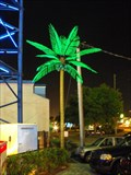 Image for Oldtown Amusement Park Electric Palm Trees - Kissimmee, FL