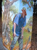 Image for Hiking Animals - Aptos, CA