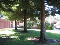 Image for Geri S Mayers - Redwood City, CA
