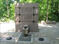 Image for Millennium park fountain