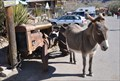 Image for Old Route 66 ~ Oatman