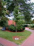 Image for Donald A.  Bonner Tree - Municipal Park- Maxton, NC