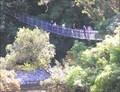 Image for Kaitoke Swingbridge. Wellington. New Zealand.