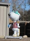 Image for Music Snoopy - Santa Rosa, CA