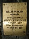 Image for Rotary Tree - 100 Years - Kaivopuisto Park - Helsinki, Finland