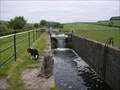 Image for Tewitfield Locks.