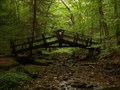 Image for Gerard Hiking Trail Bridge - Oil Creek State Park - Oil City PA