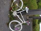 Image for Courtney Arthur Ghost Bike, Kawartha Lakes, Ontario