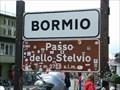 Image for Stelvio Pass, Italy (2758m)