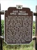 Image for Gays Mills Apple Orchards Historical Marker