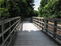 Image for Five Star Trail - Highland Avenue Trail Access - Greenbsurg, Pennsylvania