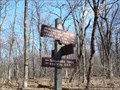 Image for Appalachian Trail - Tuscarora Trail - Darlington Trail Intersection - Blue Mountain, Marysville PA