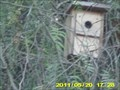 Image for Pinecrest Park Bird Boxes