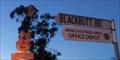 Image for Guitar, Blackbutt Rd, Port Macquarie, NSW, Australia