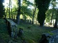 Image for židovský hrbitov / the Jewish cemetery, Horní Cerekev, Czech republic
