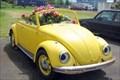 Image for VW Bug Flower Garden