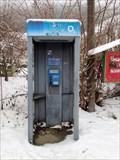 Image for Telefonni automat, Teskov