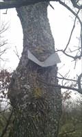 Image for Chêne dévorant une pancarte sur le Plateau de Valensole