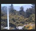 Image for South Peninsula Hebrew Day School Webcam - Sunnyvale, CA
