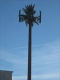 Image for Tropicana Cell Palm - Las Vegas, NV