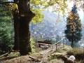 Image for Blick vom Zundelfelsen - Schönau/Germany