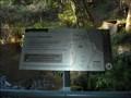 Image for East Rim Wildflower Walk Trackhead - Morton National Park, Fitzroy Falls, NSW